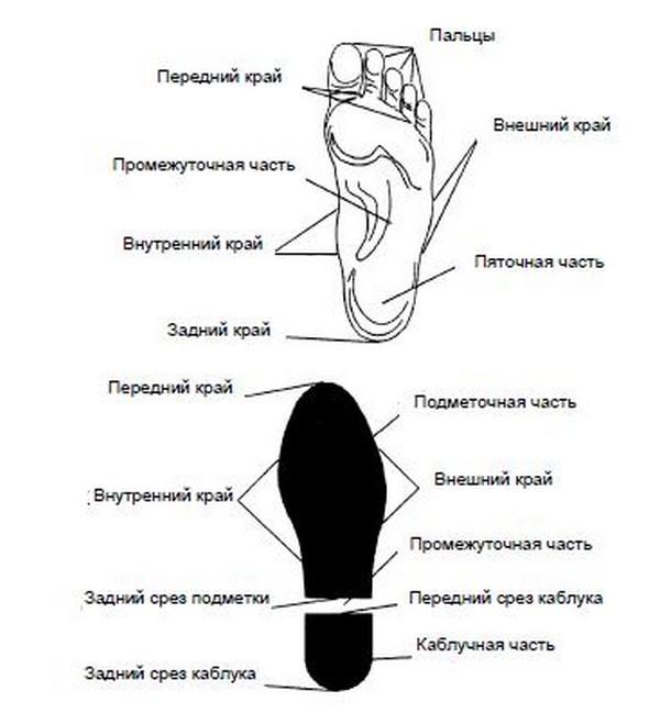 Части следа босой ноги и обуви